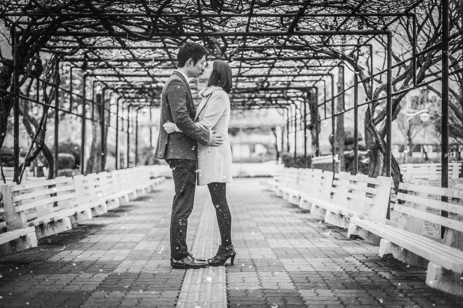 pre-wedding photos in Korea